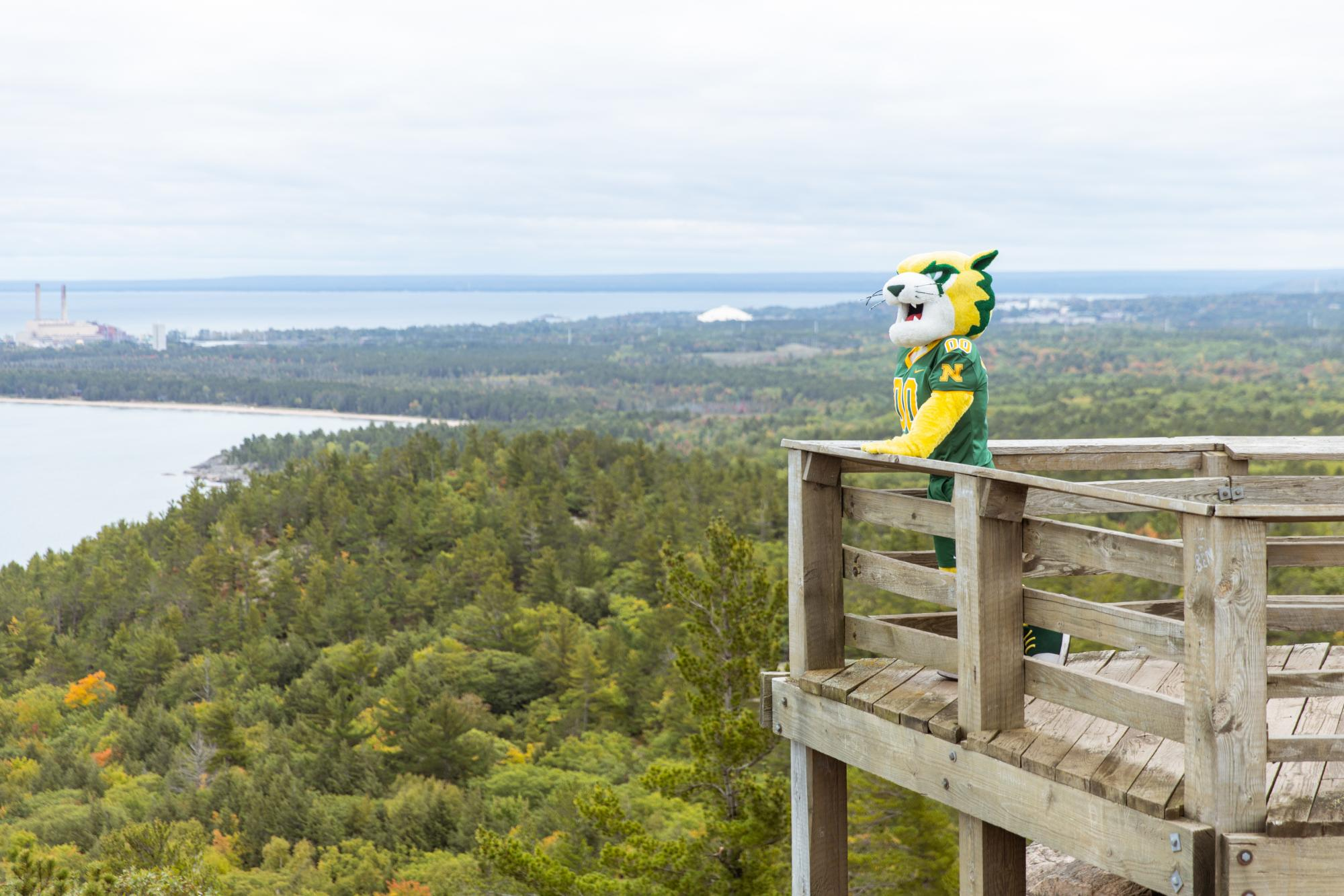 Wildcat Willy on top of Sugarloaf Mountain in Marquette