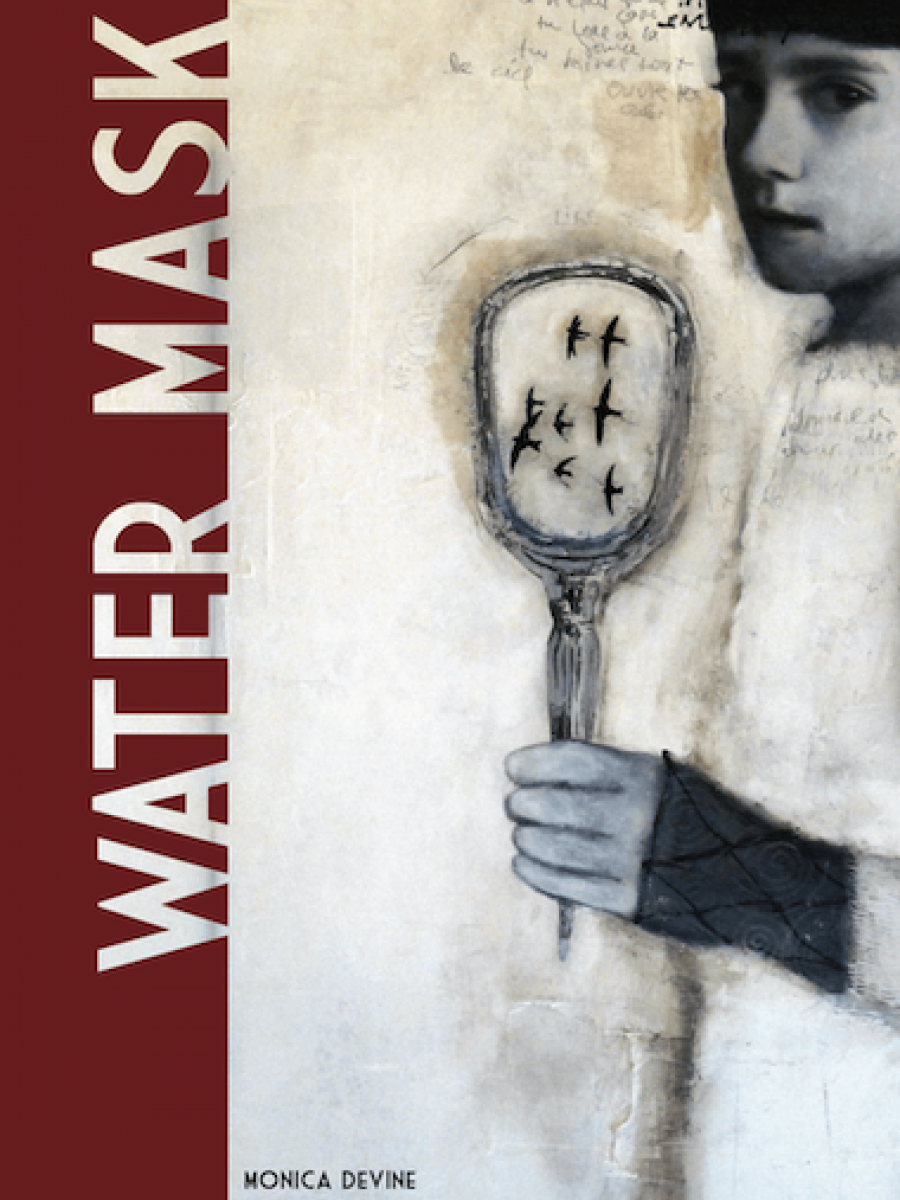 Water Mask book cover