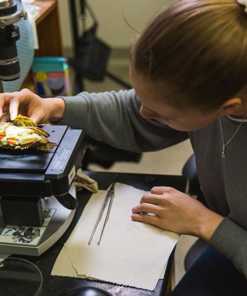 Female student doing research on a crab