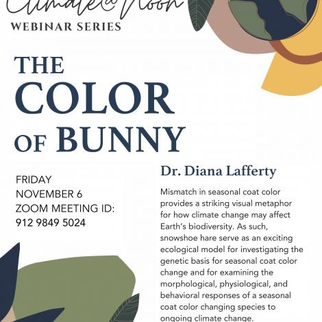The color of bunny poster describes the event and provides the zoom link