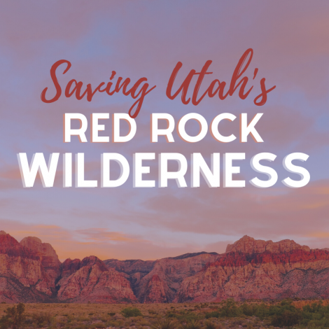Saving Utah's Red Rock Wilderness