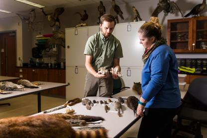 Male professor doing research with a female student in the Zoological museum