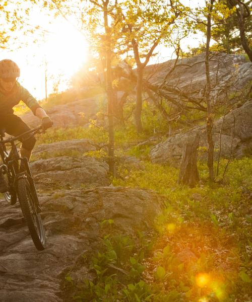 Students mountain biking at sunset